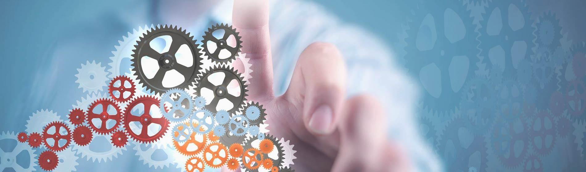 SAP Business One Custom Solution