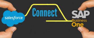 Sales Force Connect